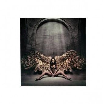fotografia angel caido